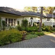 Проектирование садовых и дачных домиков фото