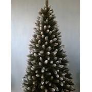 Новогодние елки,сосни,подарки,венчик фото