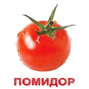 """Набор развивающих карточек по Доману """"Овощи"""" фото"""