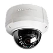 Купольная IP-камера с ИК SVI-242B фото