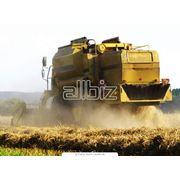 Сельскохозяйственная техника оптом цена Киев фото