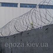 Егоза Стандарт 450/5 фото