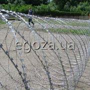 Спираль Егоза Кайман 950/9 фото