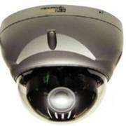 Камера Hitron HDG-T320 Full HD Resolution Vandal-proof Dome Network Camera фото