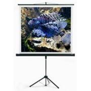 Проекционные экраны на треноге MW серии Starflex 175 х 175см фото