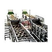 Автоматический моющий погружной аппарат с движущейся платформой фото