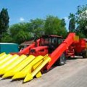 Комбайн кукурузоуборочный самоходный шестирядный ПКК-6. фото