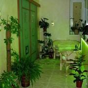 Озеленение помещений фото