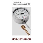 Термометр биметаллический тб-2р, тб100. фото