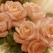 Igor Levashov, Peach Rose Splendor II, GOGQ 11942, 75x100 фото