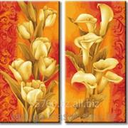 Картина по номерам Золотые каллы и золотые крокусы фото