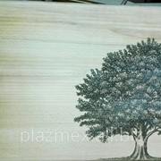 Лазерная гравировка на дереве и картоне фото