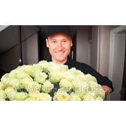 Доставка цветов по Минску фото