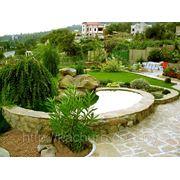 Ландшафтный дизайн, благоустройство и озеленение фото
