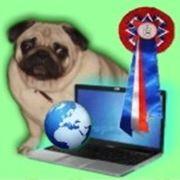 Первая выставка собак он-лайн фото