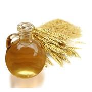 Масло зародышей пшеницы - масло из ростков пшеницы фото