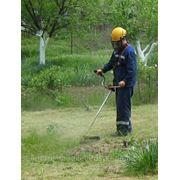 Покос травы, газонов организациям и населению фото