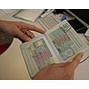 """Многократная польская шенген-виза """"за покупками"""" фото"""