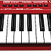 Миди-клавиатура Behringer UMX 250 U-CONTROL фото
