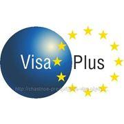 Шенгенская виза однократная Литва без личной подачи фото