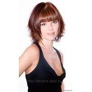 Элюминирование волос в Бресте фото