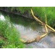 Экологический авиционный мониторинг рек и озер фото