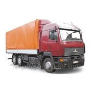 Автомобили МАЗ-6312А5-320, 370-010; МАЗ-6312А8-320, 360-010 фото