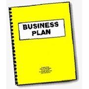 Бизнес-план для индивидуального предпринимателя (для получения субсидии в центре занятости, РБ) фото