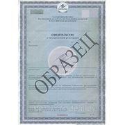 Государственная регистрация (санитарно-гигиеническая экспертиза) продукции (товаров) фото