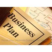 Бизнес-планы и технико-экономические обоснования. Написание и сопровождение. Гомель фото