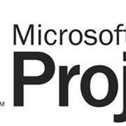 Курс Управление проектами Microsoft Project фото