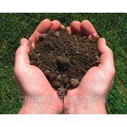 Технические условия на грунты, почвы. фото