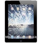Замена сенсорного стекла экрана в iPad 3 2 4 mini фото