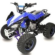 Квадроцикл бензиновый Speedy 3G8 фото