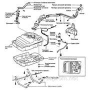 Очистка топливной системы автомобилей Toyota Донецк. фото