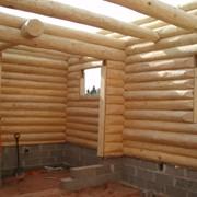 Дома срубы из оцилиндрованной древесины. фото