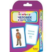 Набор карточек Interbaby Части тела к05 фото
