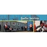 Ремонт рефрижераторных контейнеров. фото