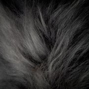 Gray Icelandic Sheepskin, Gotland Sheepskin фото