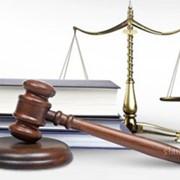 Юридические, бухгалтерские, кадровые услуги фото