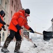 Вывоз и уборка снега. фото