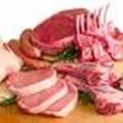 Мясо говядина полутуши глубокой заморозкиМясо говядина полутуши глубокой заморозки фото