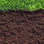 Удобрение почвы в саду фото