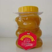 Мед в форме мишки фото