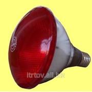 Инфракрасная лампа PAR 175W фото