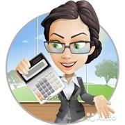 Бухгалтерский учет, анализ и аудит. Базовый курс. фото