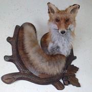 Чучело лиса, на деревянной 3 а, подставке, настенное фото