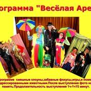 Программа с клоунами и дрессированными животными Весёлая арена фото