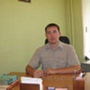 Ведение дел в суде, арбитраж фото