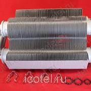 Битермический теплообменник Ferroli Domitech F24 | C24, Easytech F24 | C24 39828990 фото